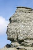 cairo egypt giza sphinx Arkivbild