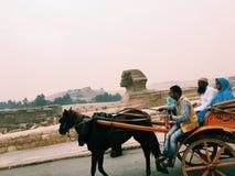cairo egypt giza sphinx Fotografering för Bildbyråer