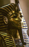 The Gold Mask of Tutankhamun in tge egyptian museum. CAIRO, EGYPT - JUNE 10: The Gold Mask of Tutankhamun, composed of 11 kg of solid gold, is on display at the Royalty Free Stock Image