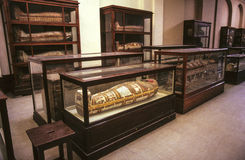 Mummies at the Egyptian Museum. CAIRO, EGYPT - JUNE 10: mummies at the Egyptian Museum on June, 10,1992 in Cairo,Egypt.  The museum at the Tahrir Square opened Royalty Free Stock Photography