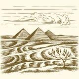 cairo piramidy egipskie pustyni Egiptu zabra? royalty ilustracja