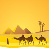 Cairo, pyramids scenic. Egypt, pyramids with tourists and guide Stock Image