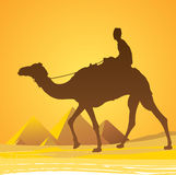 Cairo, pyramids scenic. Cairo, pyramids with Egyptian man illustration Royalty Free Stock Image