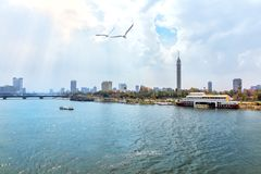 Cairo Tower and the Nile, beautiful morning view. Africa, arabian, architecture, bird, blue, boat, bridge, building, business, capital, center, city, cityscape royalty free stock photography