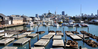 Cais 39 San Francisco Imagem de Stock Royalty Free