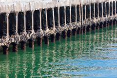 Cais antigo em uma calma e em um mar verde imagens de stock royalty free