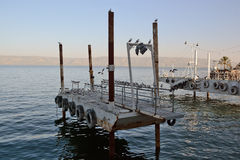 Cais (cais) na margem Tiberias Imagem de Stock