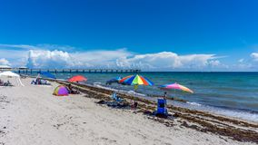 Cais da praia de Dania em Hollywood, Florida Povos que apreciam suas férias e que nadam na praia no verão fotografia de stock