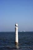 Cais das Colunas, Lisboa, Portugal Foto de archivo
