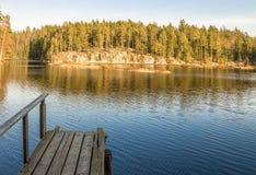 Cais de madeira na lagoa da floresta Fotografia de Stock Royalty Free