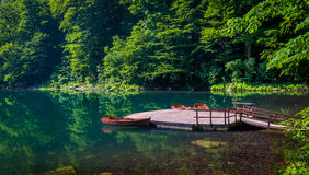 Cais de madeira no lago da floresta Imagem de Stock Royalty Free