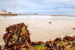 Cais de Worthing da praia Fotografia de Stock
