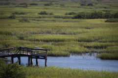 Cais e pântano em StAugustine, Florida imagens de stock