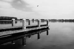 Cais no lago com o pássaro no céu Foto de Stock Royalty Free
