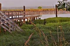 Cais velho em uma Costa do Pacífico do pântano imagem de stock royalty free