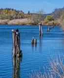 Cais velhos em fechamentos da cascata, Oregon Foto de Stock