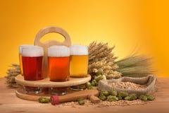 Caisse de bière avec des verres de bière Images stock