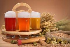 Caisse de bière avec des verres de bière Image libre de droits