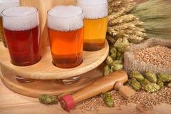 Caisse de bière avec des verres de bière Photo libre de droits