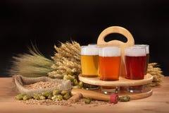 Caisse de bière avec des verres de bière Photographie stock libre de droits