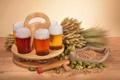 Caisse de bière avec des verres de bière Images libres de droits