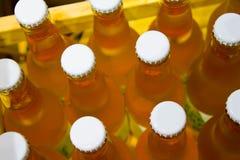 Caisse de bouteilles Photographie stock libre de droits