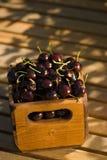 Caisse de cerises organiques Photographie stock