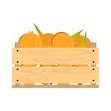 Caisse en bois aux oignons Photos stock