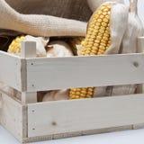 Caisse en bois avec des épis de blé Photos stock