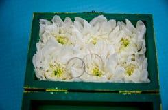 Caisse originale pour des anneaux de mariage Photographie stock libre de droits