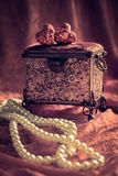 Caixão & pérolas de joia Imagem de Stock