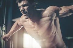 Caixa caucasiano brutal do treinamento do halterofilista no gym fotografia de stock