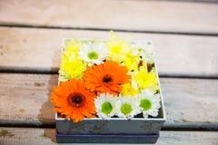 Caixa com flores Imagem de Stock