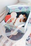 Caixa com presentes, cookies Fotografia de Stock
