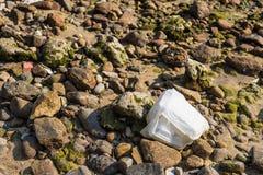 Caixa da espuma do lixo na praia de pedra no por do sol tail?ndia imagem de stock
