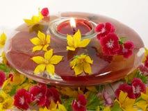 Caixa da flor Foto de Stock Royalty Free