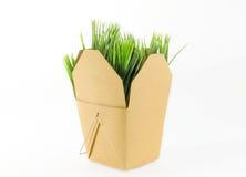 Caixa da grama Imagem de Stock