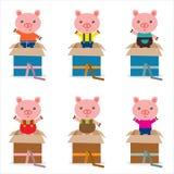 Caixa da surpresa com porco bonito ilustração stock
