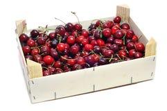 Caixa das cerejas imagens de stock