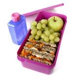 Caixa de almoço saudável Fotografia de Stock Royalty Free