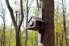 Caixa de assentamento, aviário para pássaros no parque Imagem de Stock Royalty Free