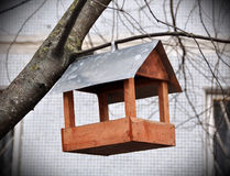 Caixa de assentamento para os pássaros Imagens de Stock