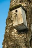 Caixa de assentamento vazia Imagens de Stock Royalty Free