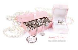 Caixa de jóia completamente da prata Fotos de Stock