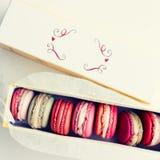 Caixa de macarons pasteis Fotos de Stock Royalty Free