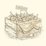 Caixa de madeira com cebola do bulbo Fotografia de Stock Royalty Free