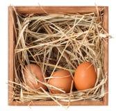 Caixa de madeira com feno e ovos imagens de stock