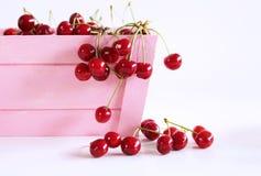 Caixa de madeira cor-de-rosa com as cerejas frescas vermelhas no fundo branco O fruto altamente nutritivo, encontrou frequentemen fotos de stock royalty free