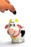 Caixa de moeda da vaca Fotografia de Stock Royalty Free