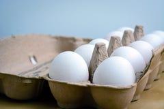 Caixa de ovos fotografia de stock royalty free